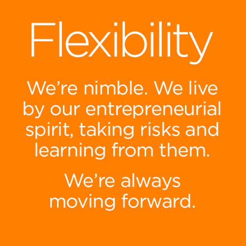 Flexibility2